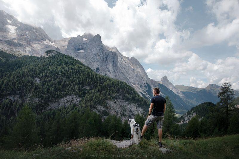 собака, природа, горы, человек Доломитыphoto preview