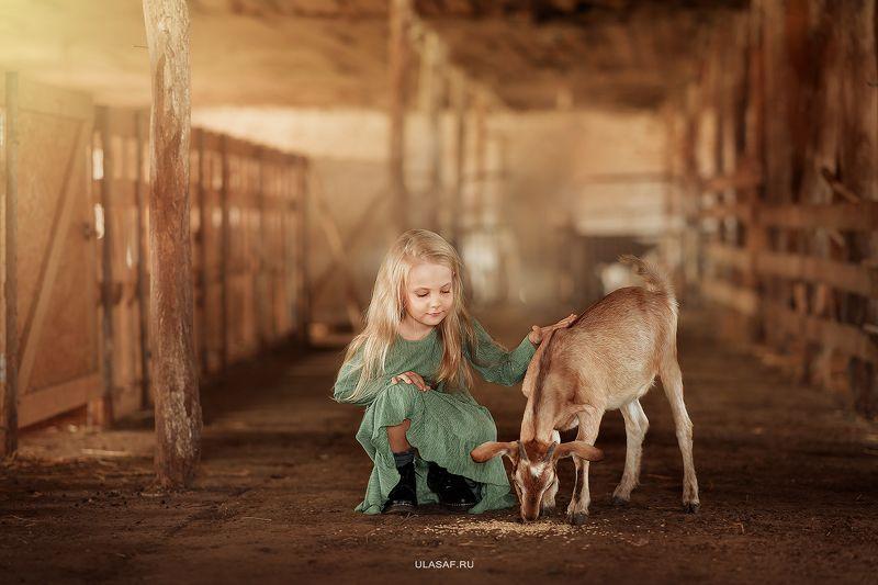деревня, ферма, девочка, лето, козочка, козленок, girl, summer, друзья, happy, happiness, village, goat, farm Катюша с козочкойphoto preview