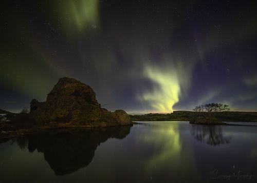 Myvatn Lake. Iceland.
