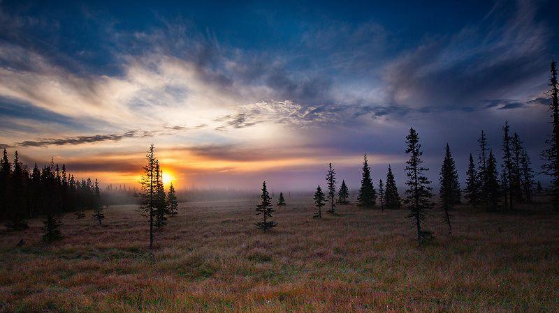 восход,туман,заморозок,коми,печора Восходphoto preview