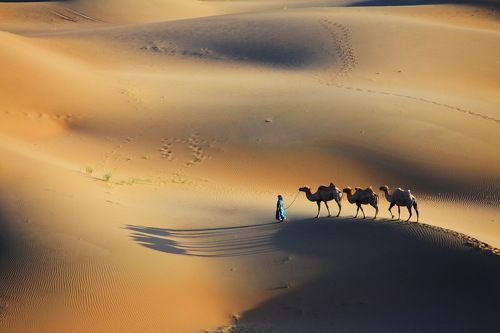 At desert 3