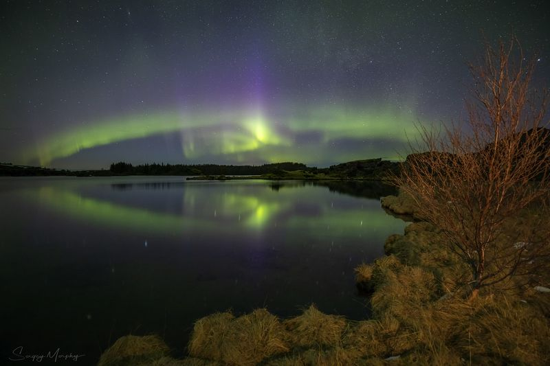 myvatn lake. iceland. northern lights Northern lights & Myvatn Lake. Iceland.photo preview