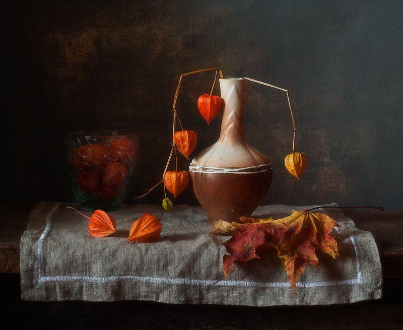 натюрморт,осень,физалис осенний...photo preview