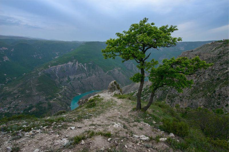 #сулак #сулакский #каньон #kutygin #кутыгин Сумеркиphoto preview