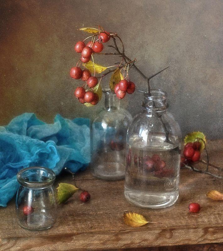 натюрморт,осень,боярышник зарисовки с боярышником...photo preview