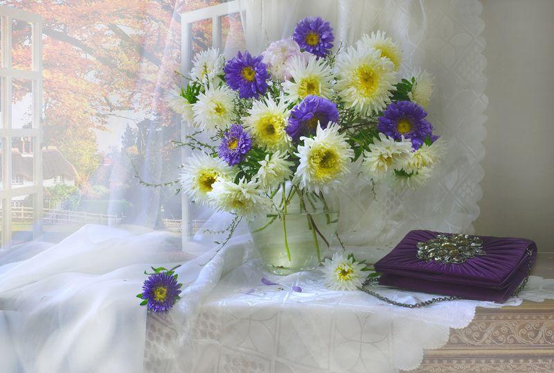 still life,натюрморт,осень, сентябрь, фото натюрморт, астры, цветы, солнечный день, бабье лето, настроение, Неповторимость осознав мгновенья...photo preview