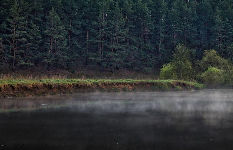 весна, река, лес, дымка, Берегphoto preview