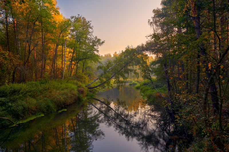 Гуслицкая осень ...photo preview