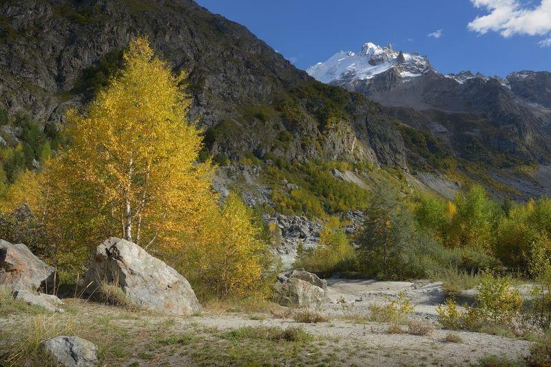 горы осень шхельда Осень в горах Кавказаphoto preview