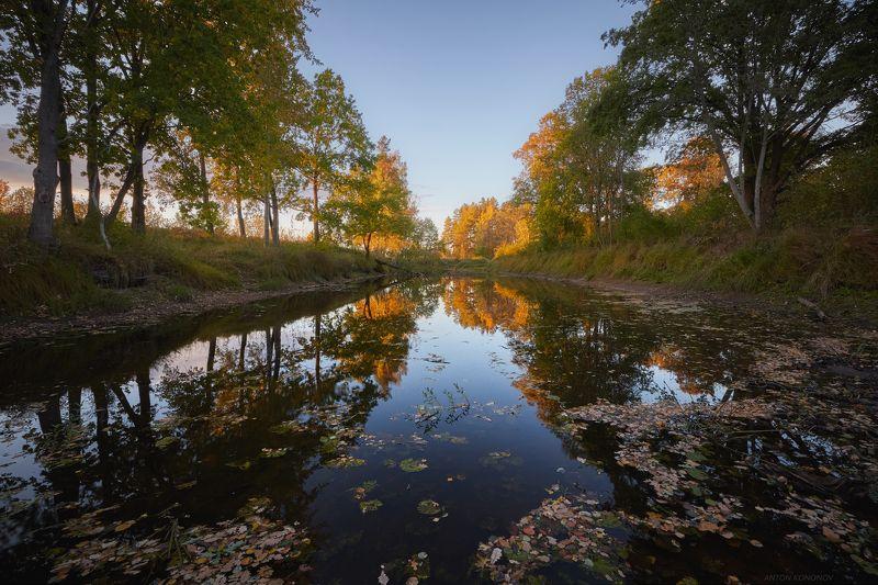 Осень...начало...photo preview
