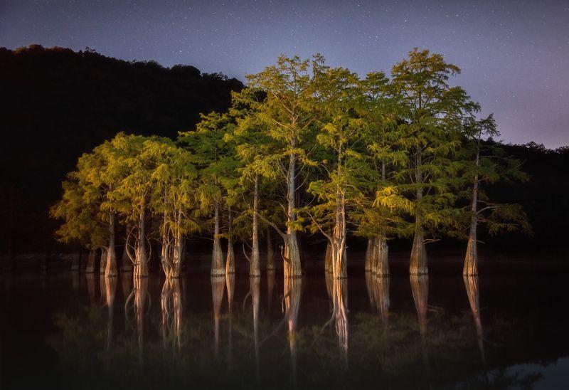 кипарис, ночь Ночь над Кипарисовым озеромphoto preview