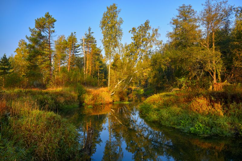 Гуслицкая осень v.2...photo preview