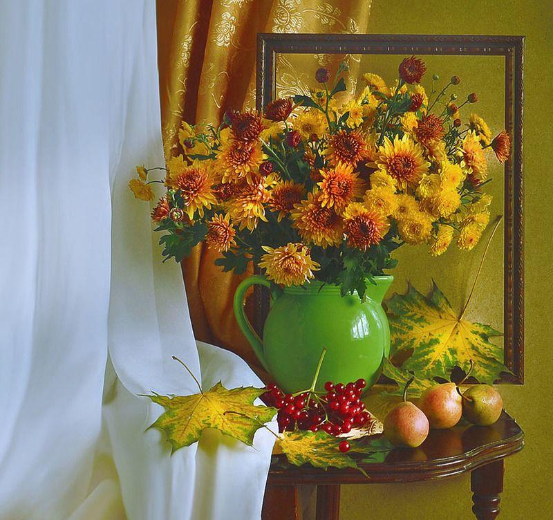 still life,натюрморт, цветы, хризантемы,фото натюрморт, сентябрь, осень ,кленовые листья, калина ,груши Нам осень дарит « звездные мгновенья»...photo preview