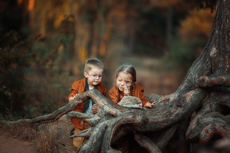 дети, осень, еж, исследователи, поход Натуралистыphoto preview