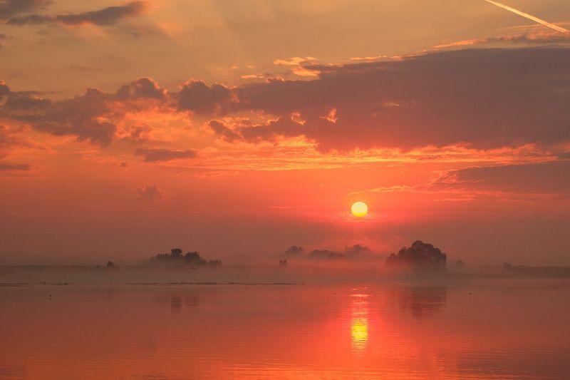 россия, рязанская область, константиново, ока, пейзаж, природа, лето, туман, река, восход солнца, рассвет, солнце По есенинским местамphoto preview