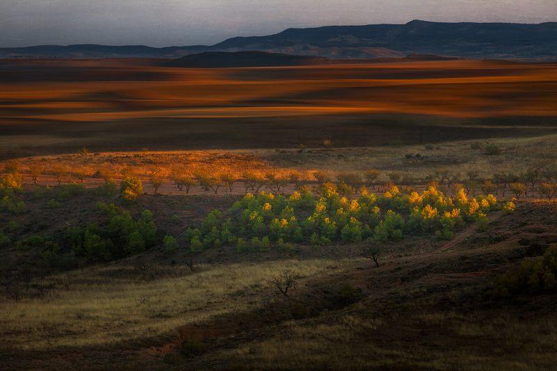 испания, пейзаж, цвет, утро Раскрашивая первыми лучами солнцаphoto preview