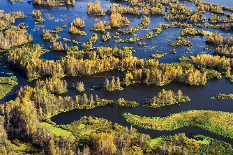 урал, осень, дрон Река Нейваphoto preview