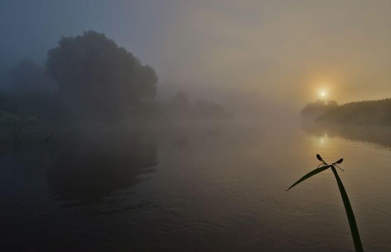 утро, рассвет, река, упа, якшино, пейзаж, природа Рассвет для двоихphoto preview