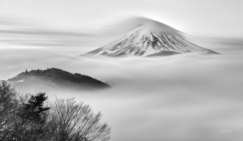 Fuji,mountain,Japan,cloud,snow,tree,black,white On the cloudphoto preview