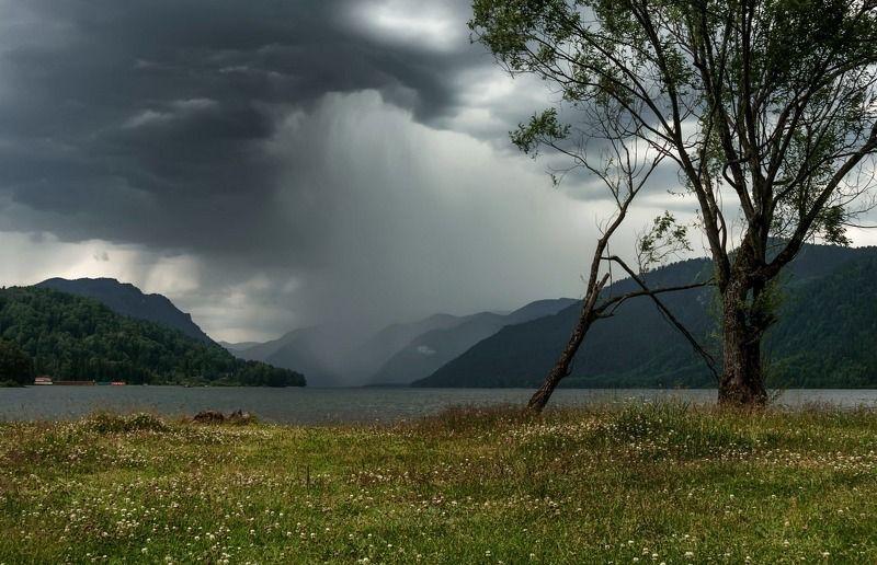 алтай. телецкое озеро. А просто была непогода.photo preview