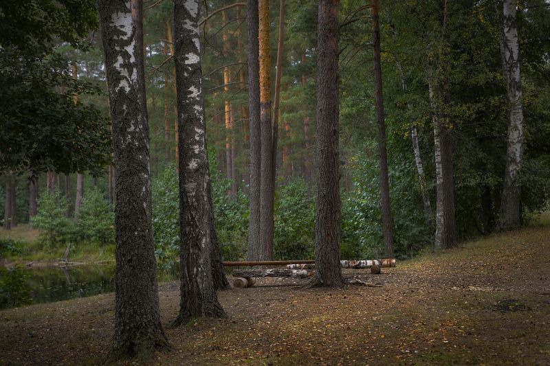 саврасово осень вечер Мелодии не слышен звук...photo preview
