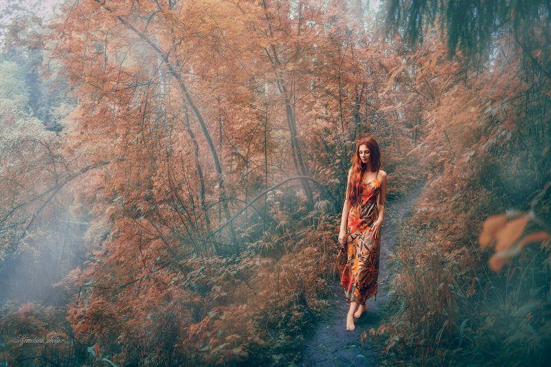 девушка, осень, русалка, портрет, туман, утро, girl, portreit, autumn, morning, fog photo preview