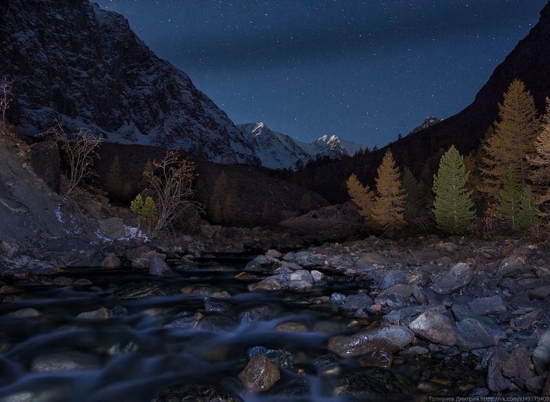 горный алтай, дикая природа россии, россия, толмачев дмитрий, горы, сибирь, актру, река, альплагерь, ночь, звезды ***photo preview