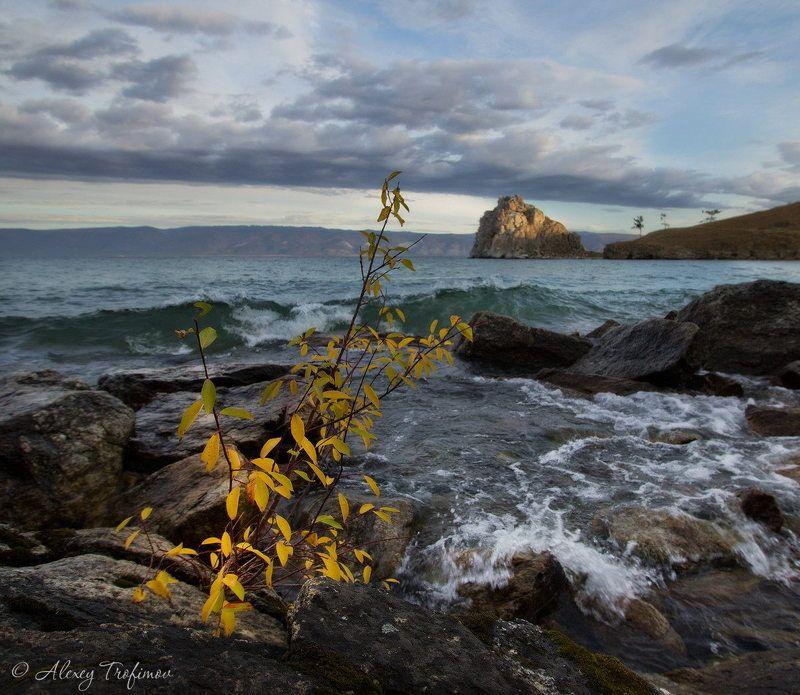 Байкал Байкал. Осень. Началоphoto preview