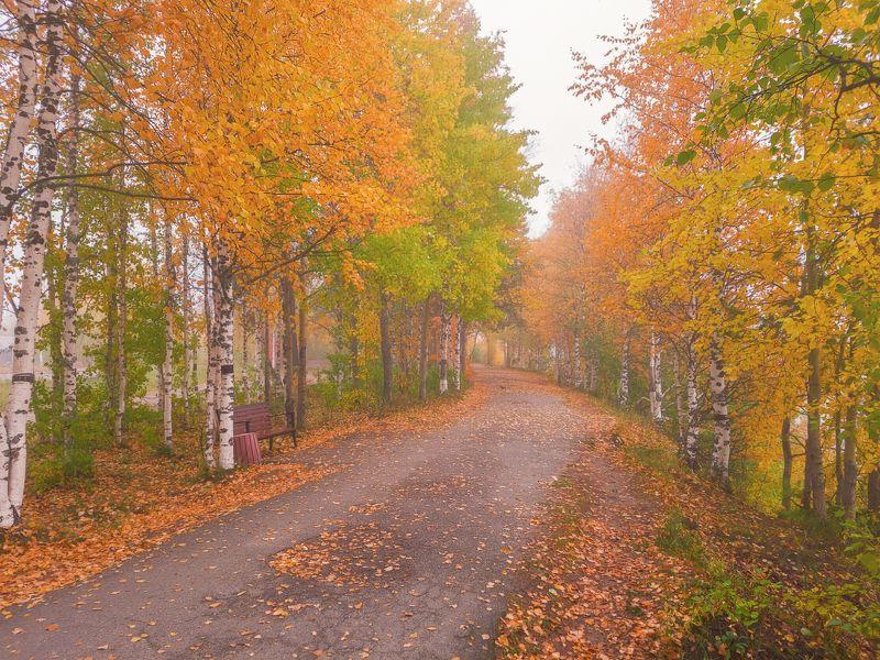 печора Осенняя набережная..photo preview
