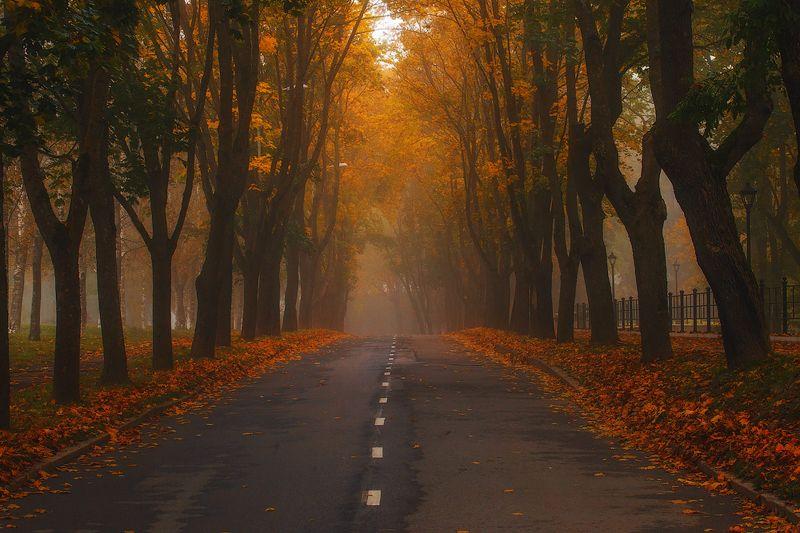 осень, нарва, пейзаж, ключенков, цвет, атмосфера Нарвская осеньphoto preview
