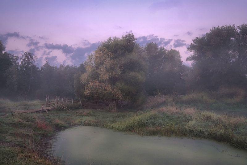 филипповское, пейзаж, туман, мост, мостик, деревянный, утро, рассвет, шерна, река Мостик в туманеphoto preview