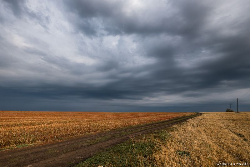 россия, пейзаж, поле, тульская область, осень, russia, landscape, field, tula region, autumn Русское полеphoto preview