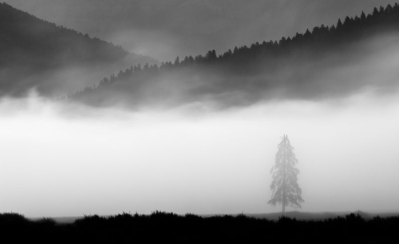 Foggy Anglesphoto preview