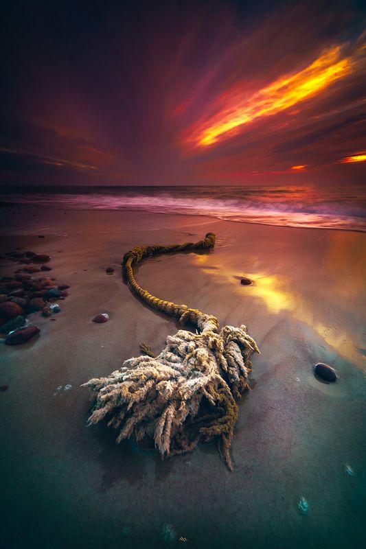 landscape, seascape, baltic sea, sunset, colors, long exposure Endangered speciesphoto preview