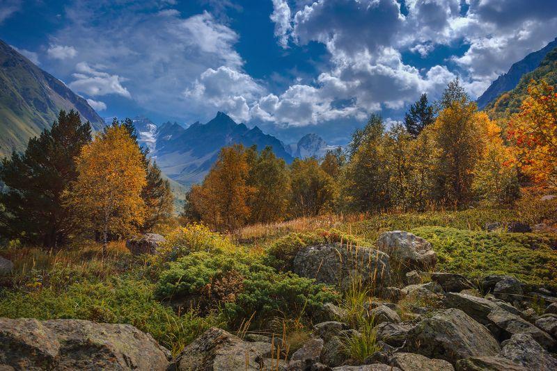 Осенний ветерphoto preview