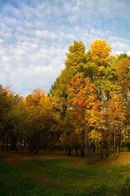осень, сентябрь Осенние зарисовкиphoto preview