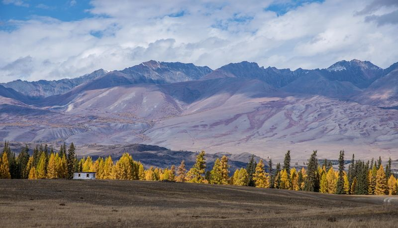 горы Курайская  степьphoto preview
