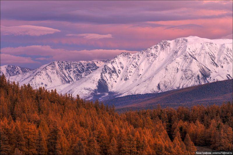 алтай, горы, горный алтай, закат, северо-чуйский хребет, #красиваяосень2018, аня графова Вечерняя ода горам!photo preview