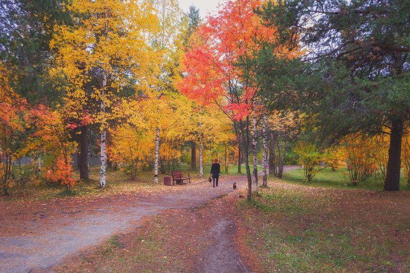 печора,коми,осень,мобильное фото Провожая осень..photo preview