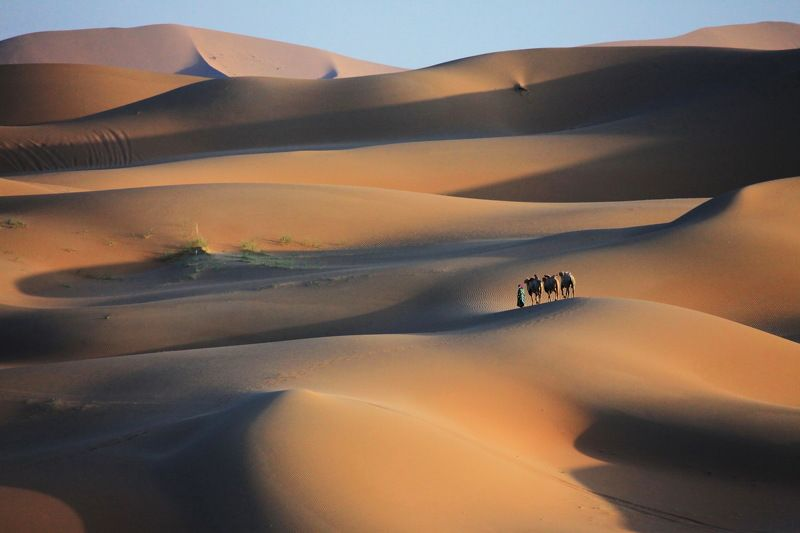 Sand  dunephoto preview