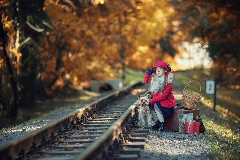 Дама сдавала в багаж...photo preview