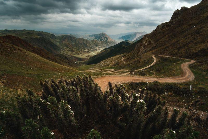 киргизия, кыргызстан, средняя азия, горы, каньон, скалы, пейзаж, лето, ущелье, дорога, утро, серпантин, перевал Путеводная нитьphoto preview