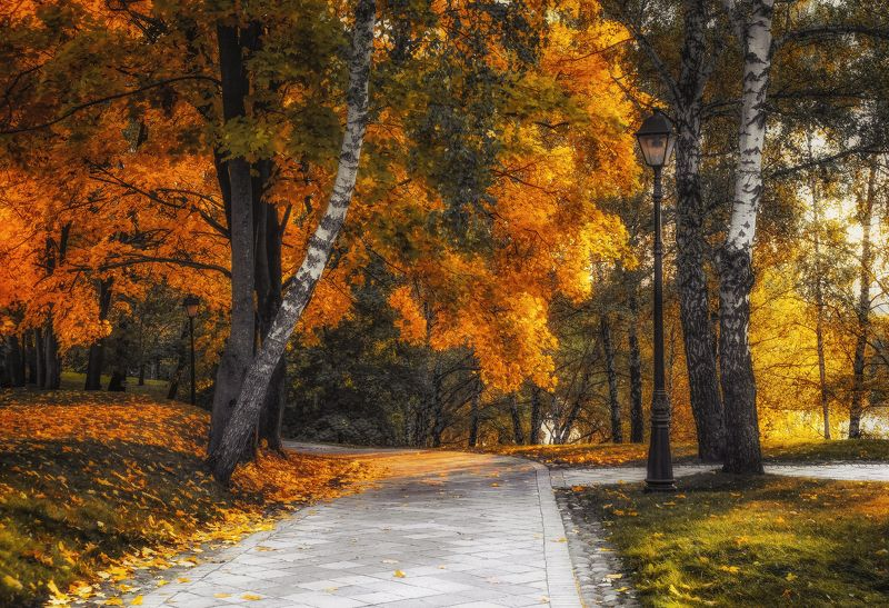 Золотая осень в паркеphoto preview