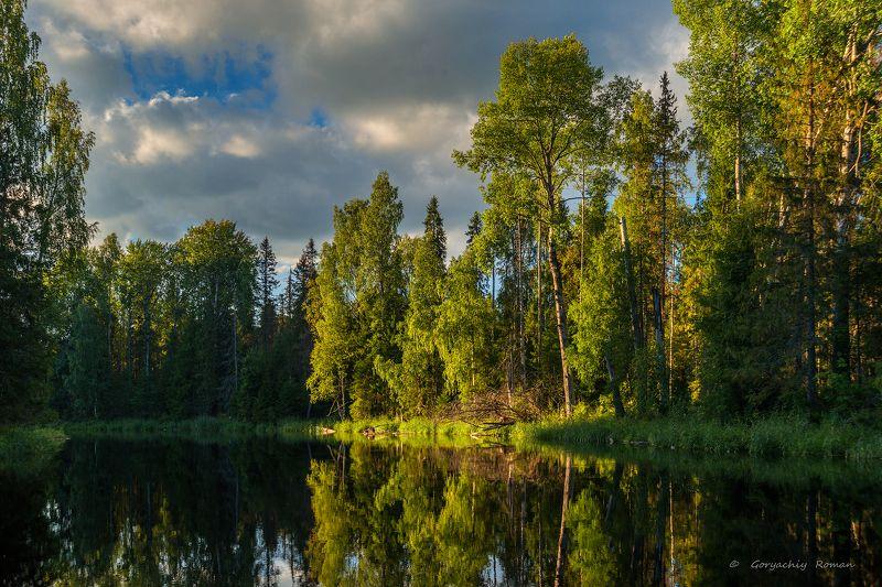 великий двор,вологодчина,кема,север,лето, Кема в августе.photo preview