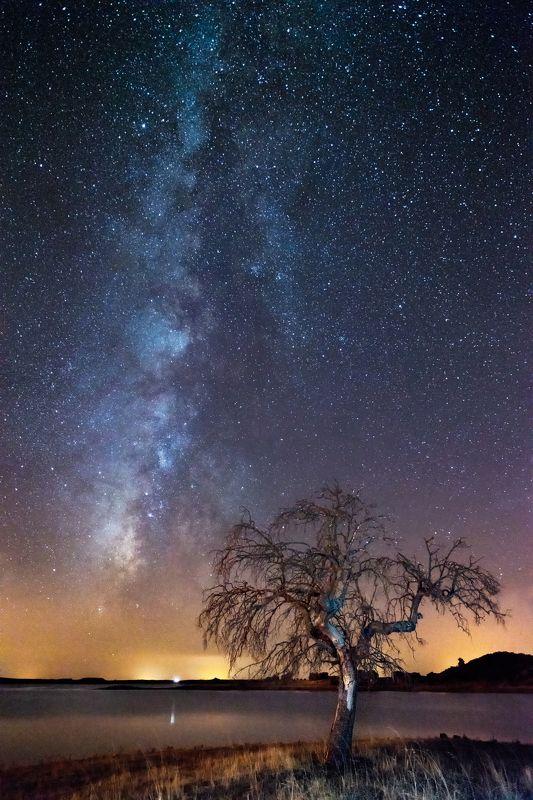 milky way,night,long exposure,lake,Portugal,photo hunter alone treephoto preview