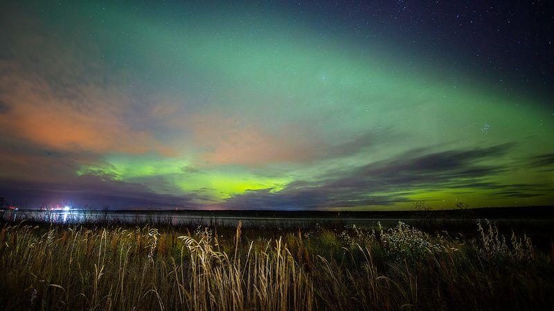 сияние,полярное сияние,сс,коми,природа,север photo preview