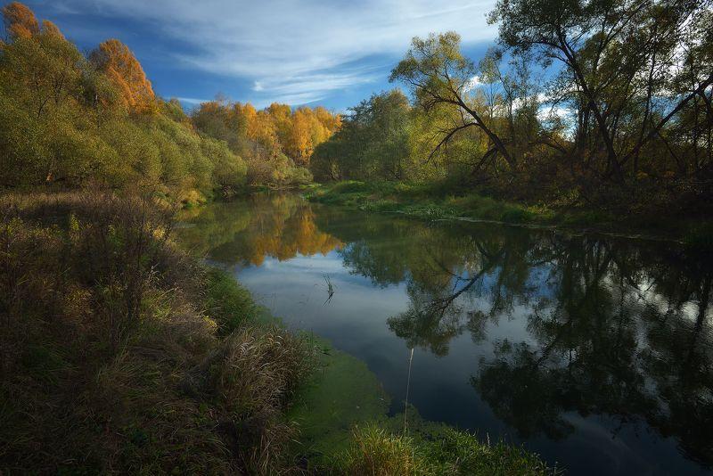 лес, природа, пейзаж, осень, река, вода, ручей, подмосковье Осенняя Истраphoto preview