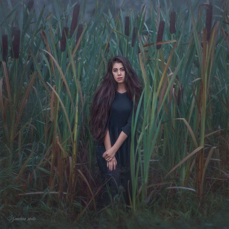 девушка, портрет, туман, утро, камыши, girl, portreit, fog, reeds, cane photo preview