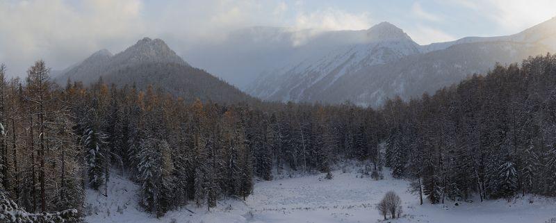 горный алтай, октябрь, осень, лиственницы, горы, замульта Вечерний свет \