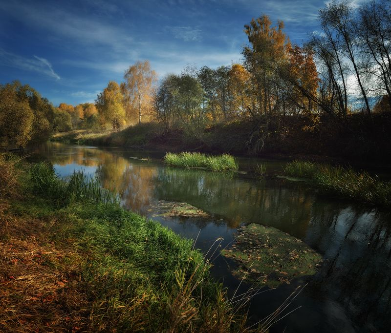 лес, природа, пейзаж, осень, река, вода, подмосковье Осенняя Истраphoto preview